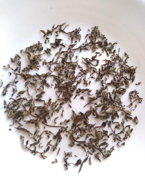 Pure Organic Mint