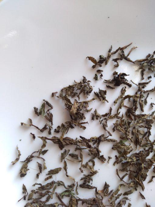 Organic Natural Mint