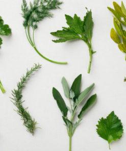 Herbs & Benefits